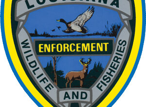 Photo of Morgan City and Houma Men Arrested for Fishing Contest Fraud