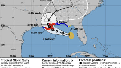 Photo of Hurricane and Tropical Storm Warnings Issued for Morgan City Area