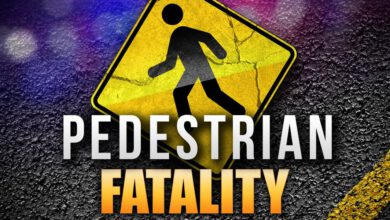 Photo of Pedestrian Killed in Late Night Iberia Parish Crash