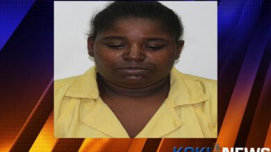 Photo of Labadieville Woman Arrested for Allegedly Murdering 1 Year Old Son, Booked on 1st Degree Murder Charges
